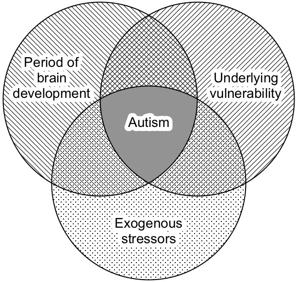 Triple Hit Study May Explain Autisms >> The Cause Of Autism Part 2 The Basics Cortical Chauvinism