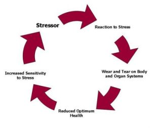 chronic-stress-diagram