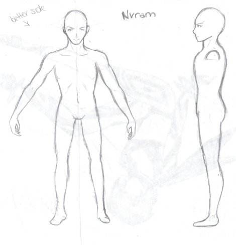 Male_Body_Plan_by_Winterphoenix23