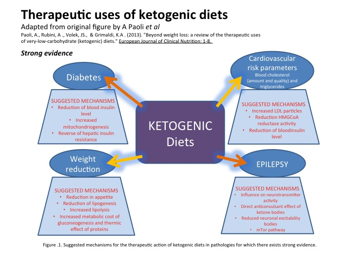THE ROLE OF THE KETOGENIC DIET IN AUTISM OR WHY BACON IS YOUR FRIEND? PART 2: METABOLIC ...