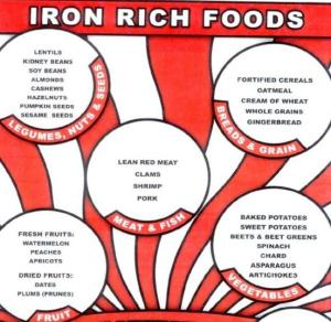 Anemia-Rich-food-in-Iron