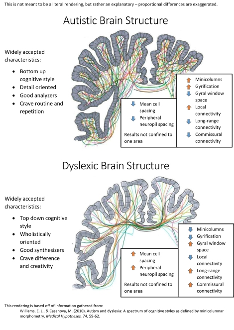 Why Autism Is Different In Brains Of >> Dyslexia And Autism Cognitive Profiles At The Tail Ends Of The Same