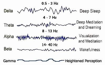 Brainstate-chart