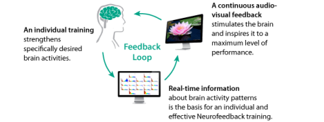 neurofeedback-loop