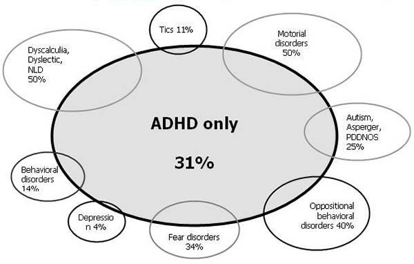 Diagram Of Adhd Diagram Data Schema